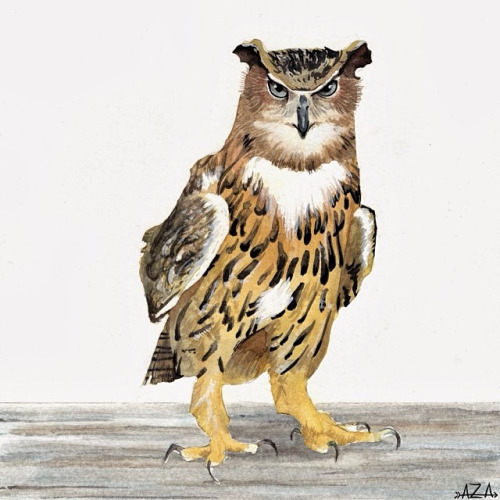 Eagle Owl watercolor image